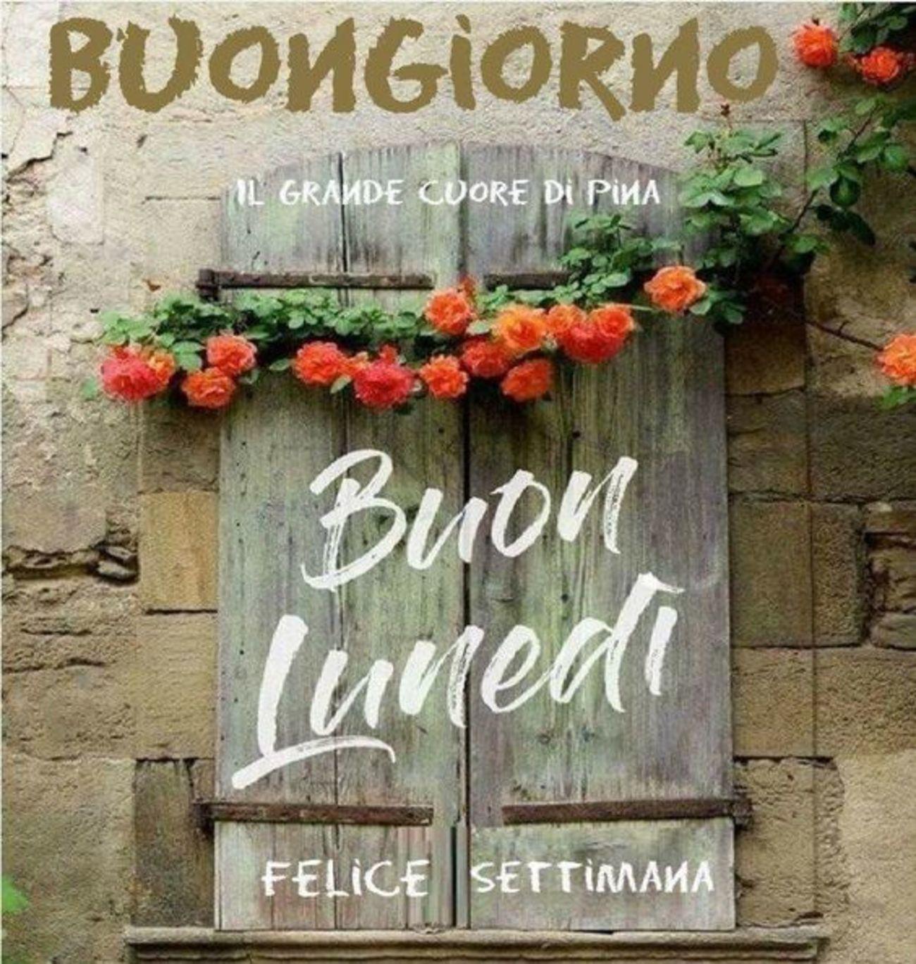 Buon luned immagini belle x whatsapp 244 buongiorno for Buon lunedi whatsapp