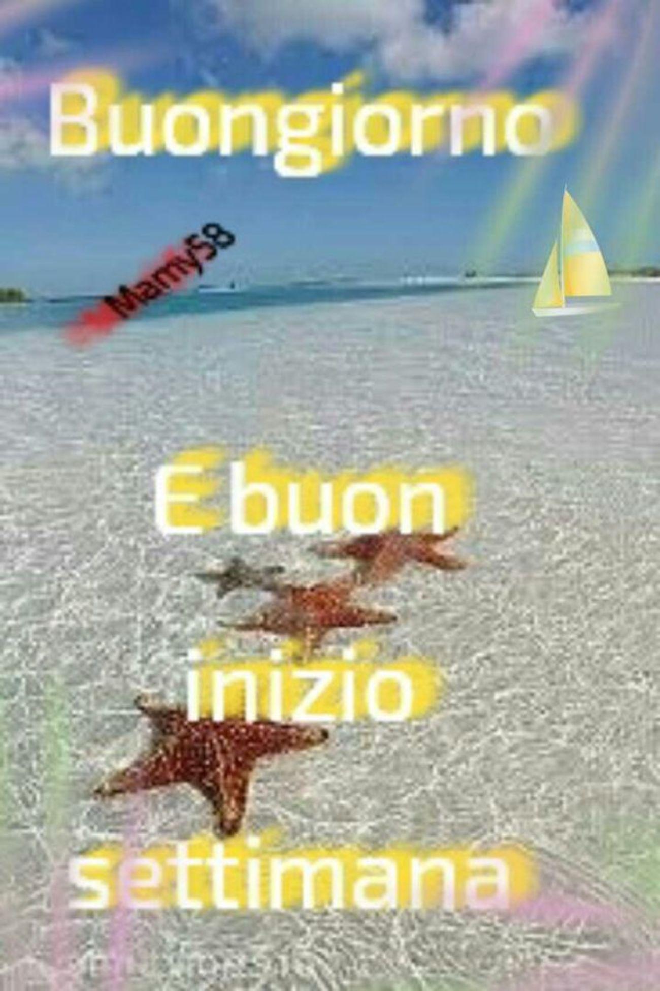 Buon luned immagini belle x whatsapp 249 buongiorno for Buon lunedi whatsapp
