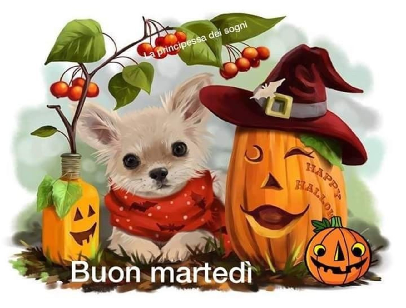 Buon Martedì Halloween 28 Buongiorno Immaginiit