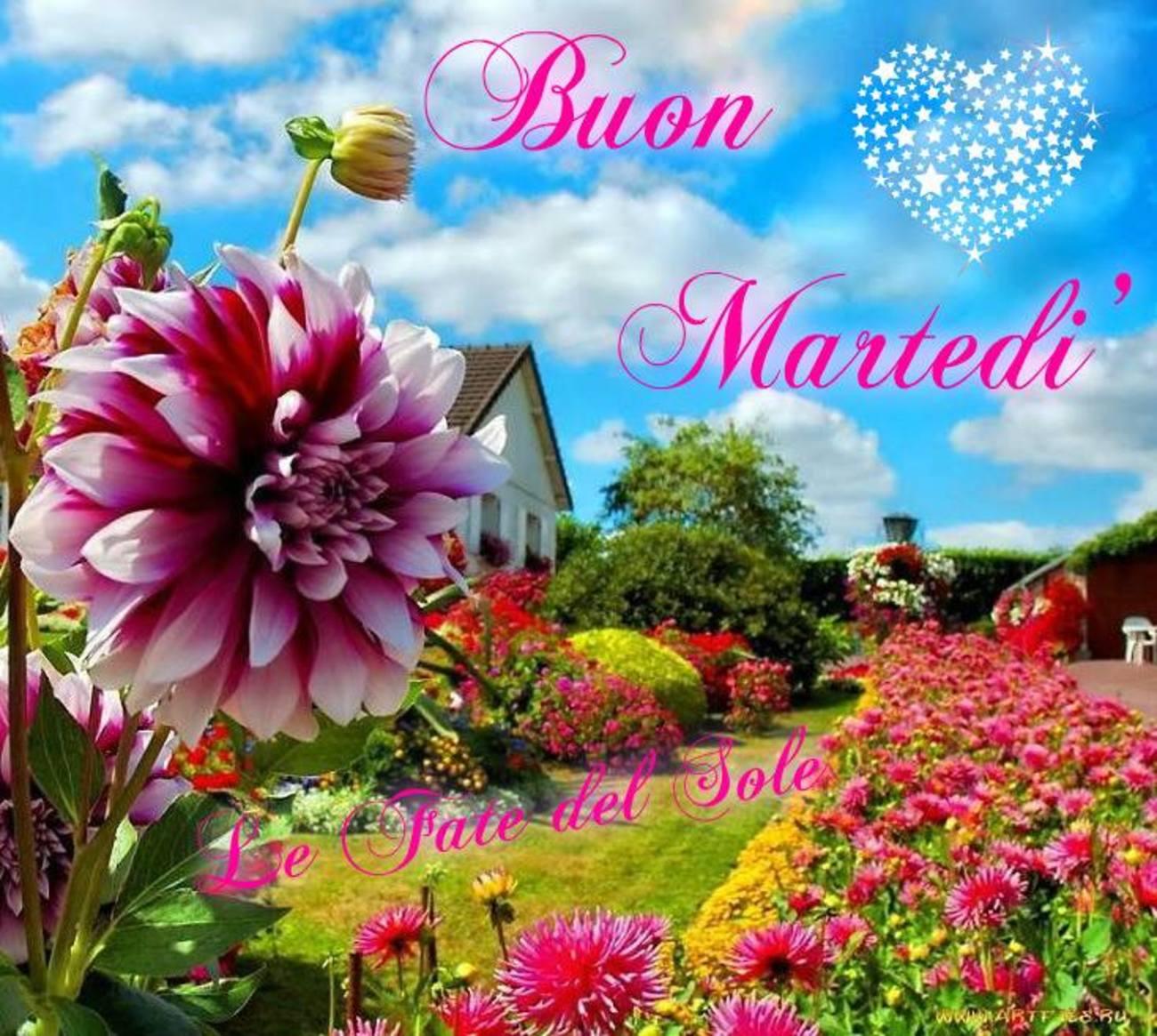 Buon Martedi Frasi 193 Buongiorno Immagini It