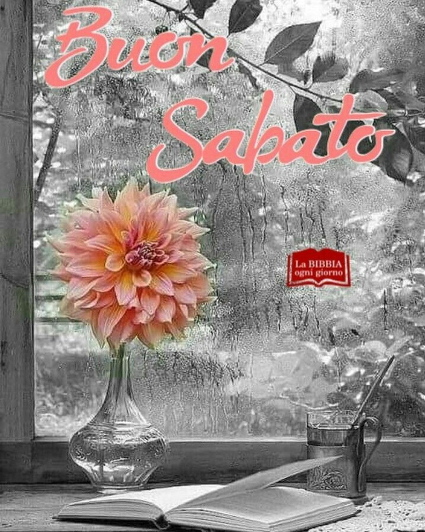 Buon Sabato immagini nuove Pinterest 240