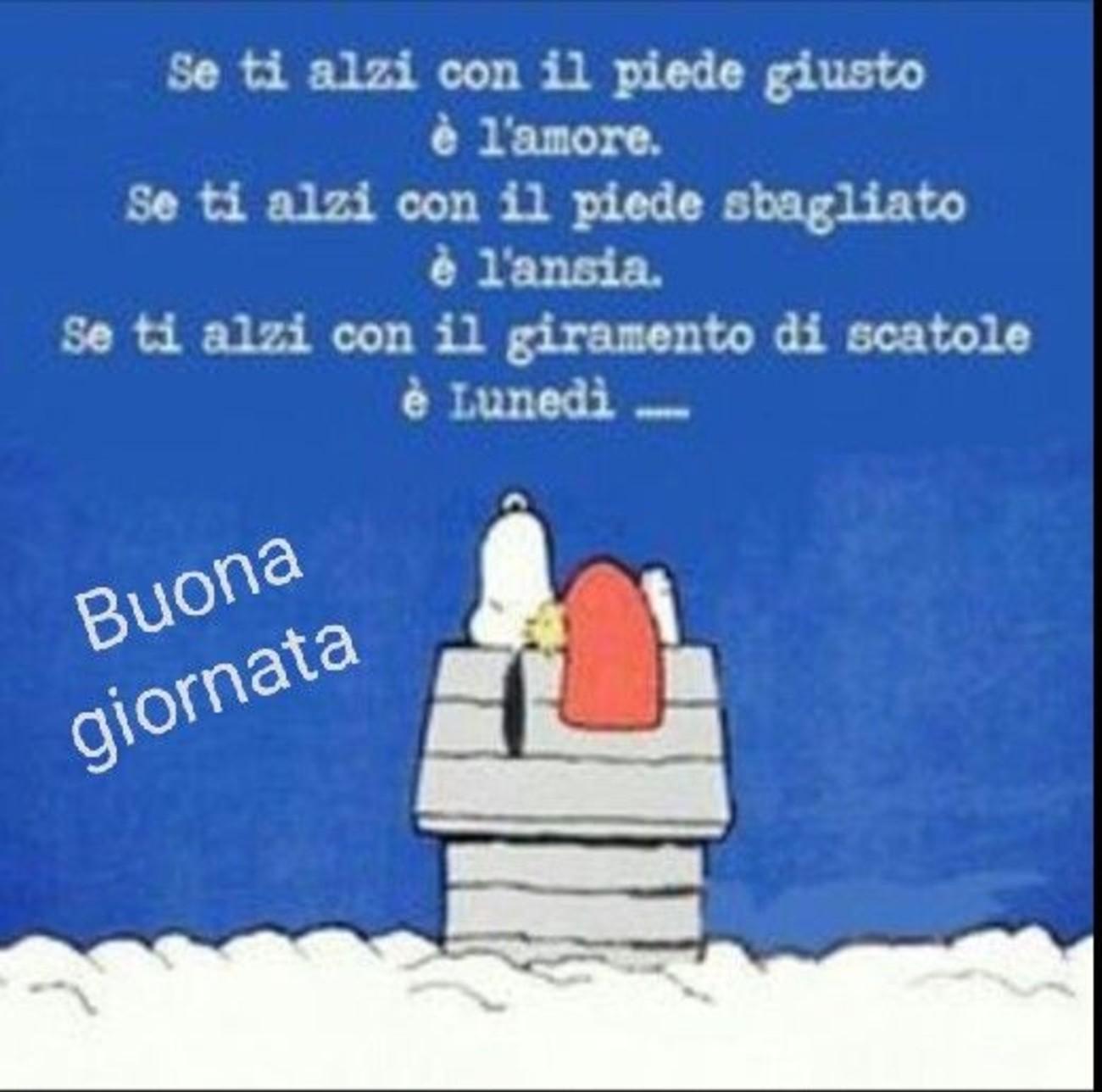 Buona Giornata E Buon Lunedì Da Snoopy 199 Buongiorno