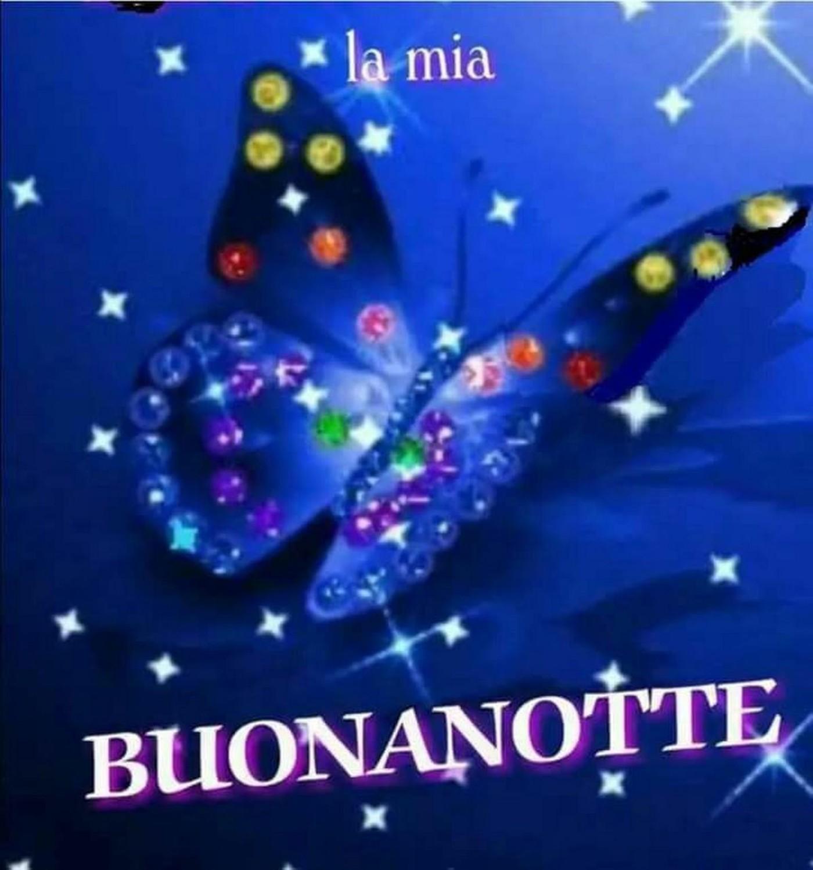 Buonanotte Farfalla 993 Buongiorno Immagini It