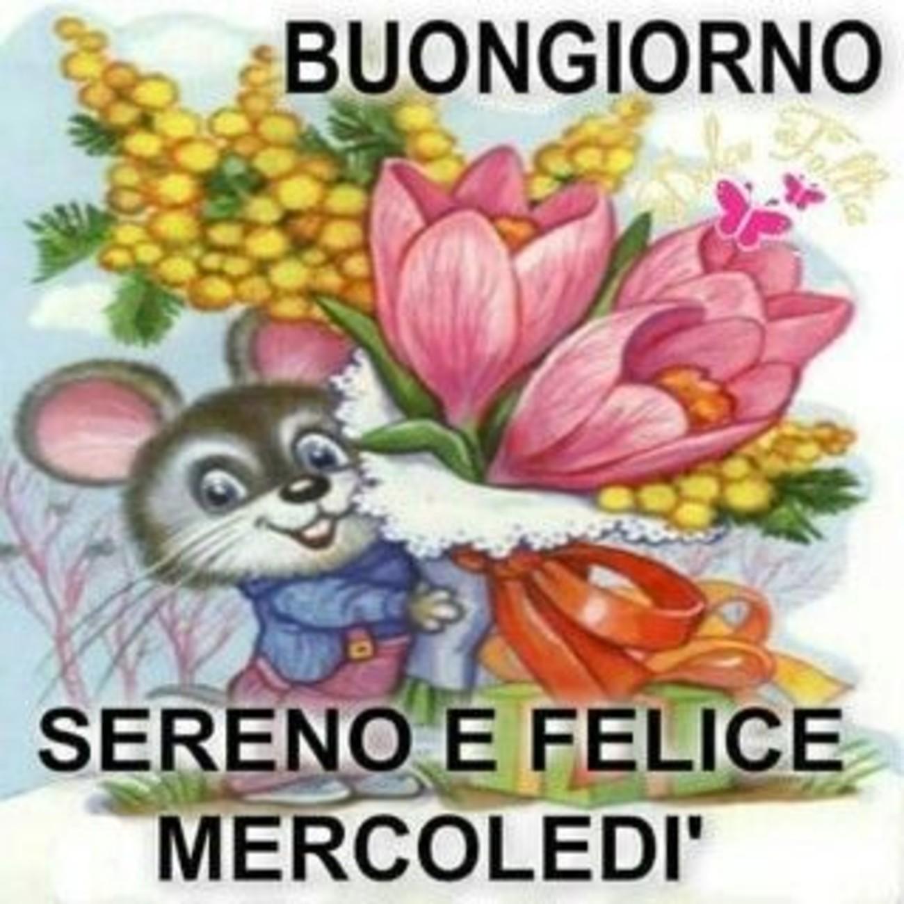 Buongiorno Sereno e Felice Mercoledì 6