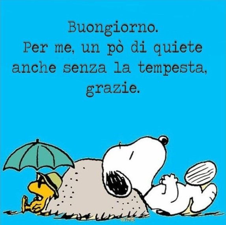 Buongiorno Snoopy immagini Facebook 34