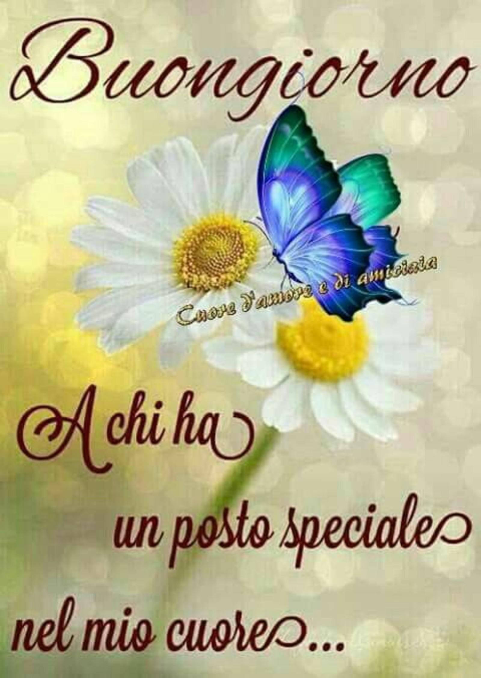 Buongiorno Speciale immagini WhatsApp 38