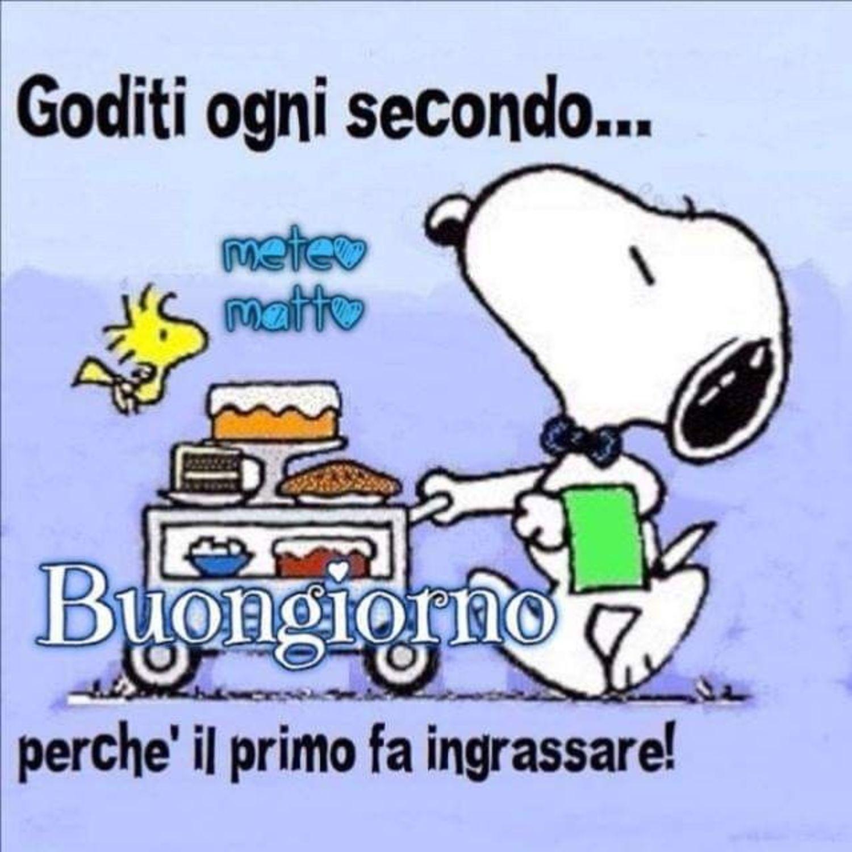 Buongiorno Divertente Snoopy 12 Buongiorno Immagini It