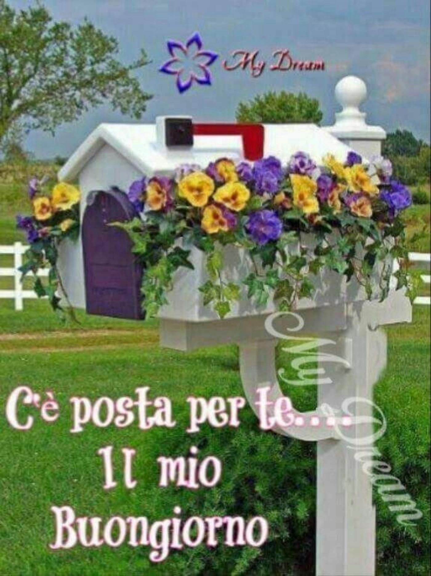 C E Posta Per Te Il Mio Buongiorno Buongiorno Immagini It