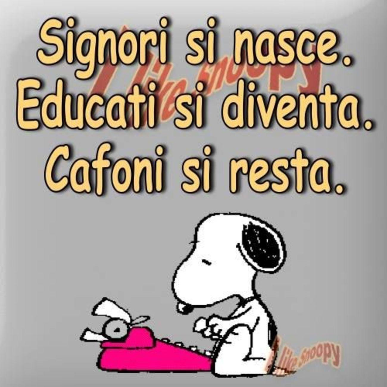 Frasi di Snoopy 463