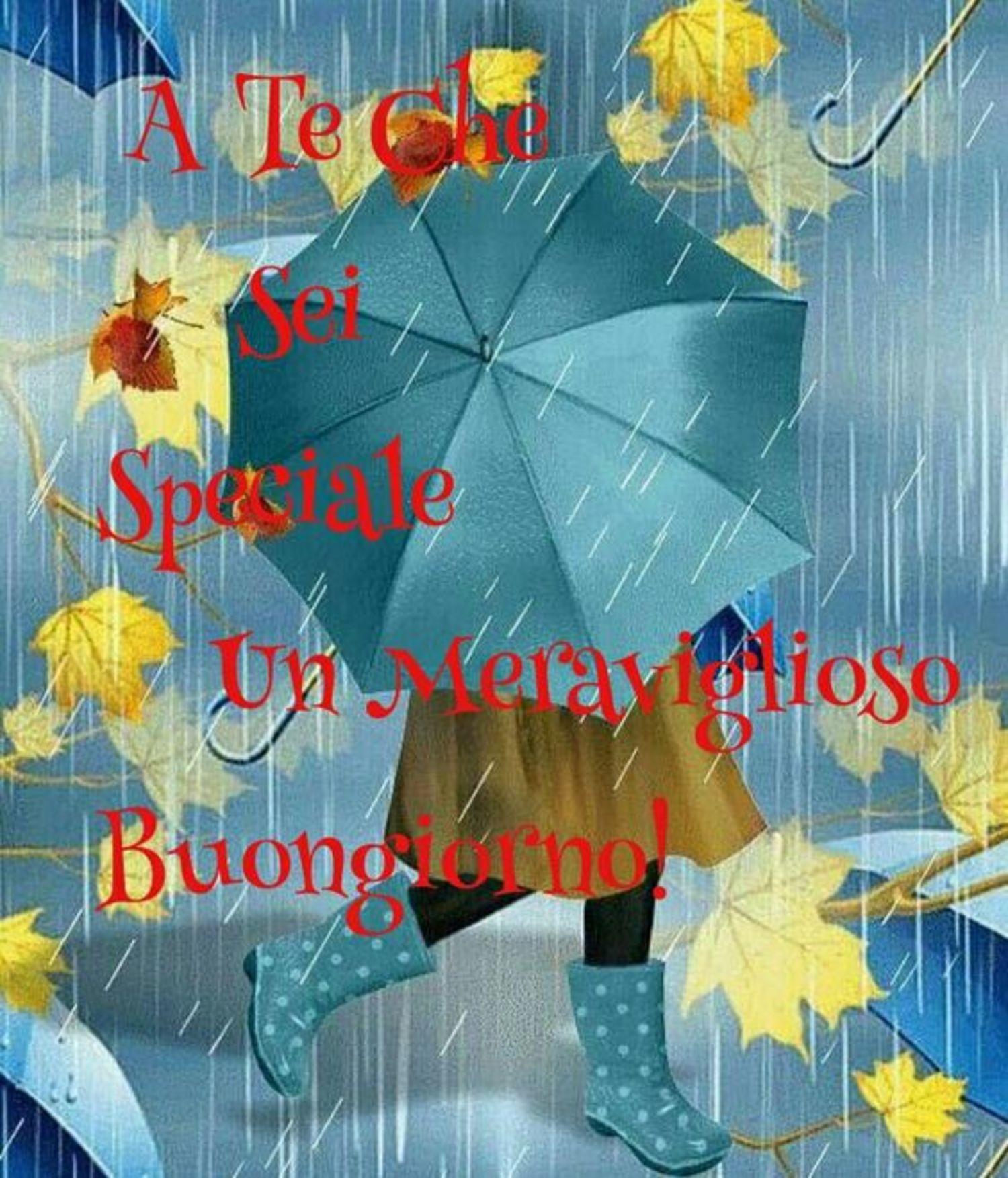 Frasi Di Buongiorno Con La Pioggia.Frasi Immagini Buongiorno Pioggia 84 Buongiorno Immagini It