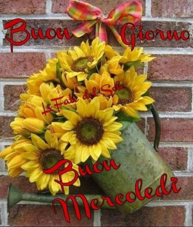 Immagini x Buon Mercoledì coi fiori 115