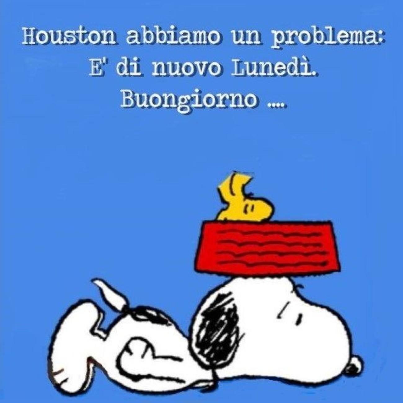 Snoopy Buon Lunedì foto bellissime x WhatsApp 187