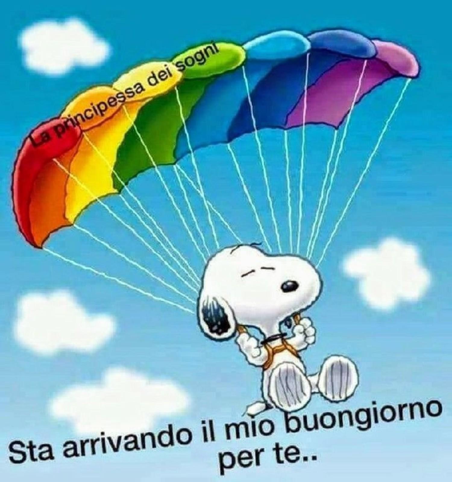 Snoopy sta arrivando il mio Buongiorno per te 49