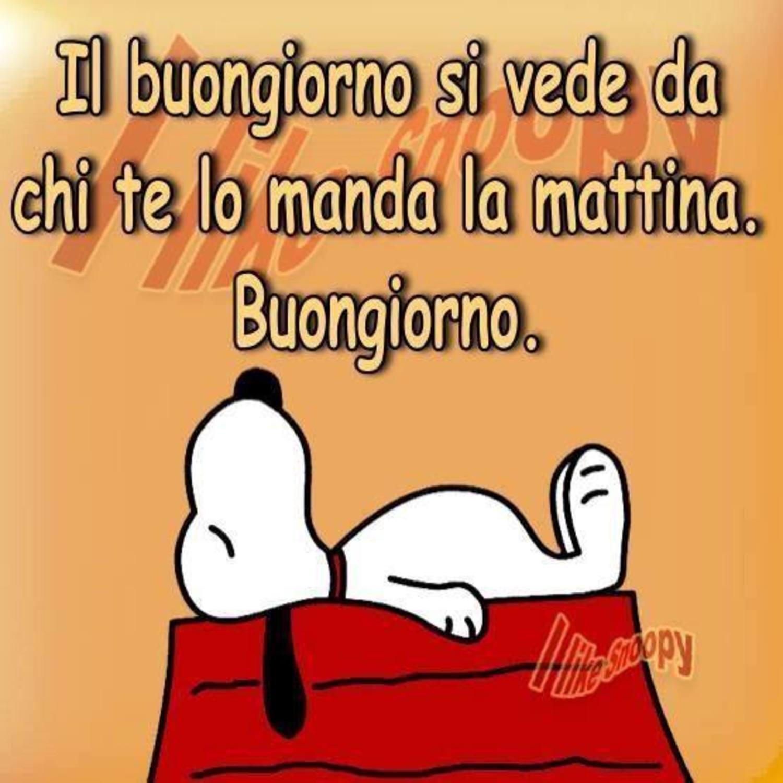 Vignette Buongiorno Snoopy 47