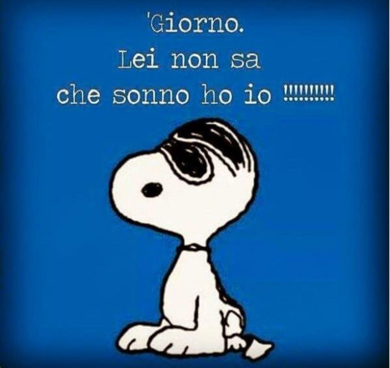 Vignette Buongiorno Snoopy 48