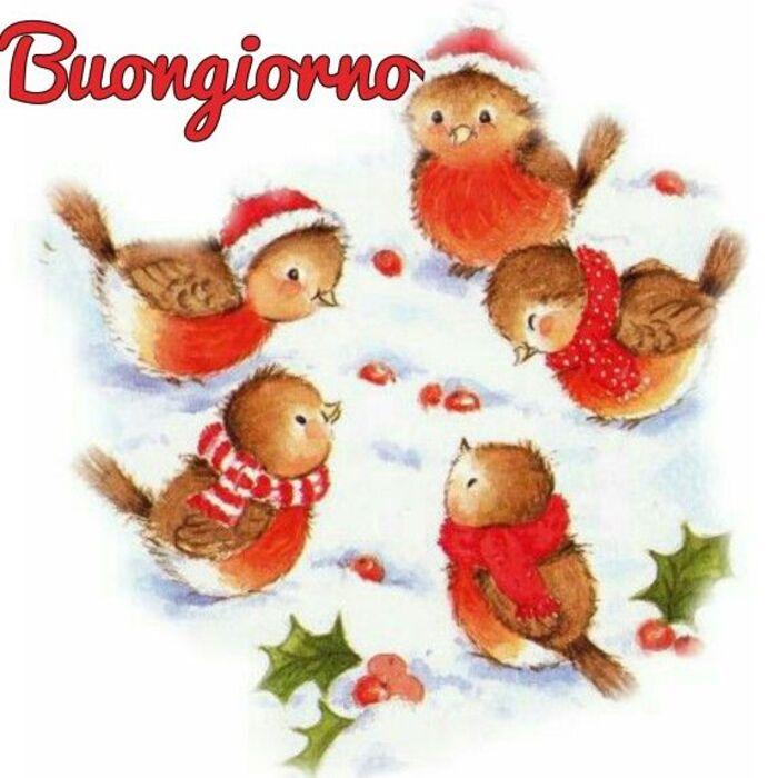 Aspettando il Natale Buongiorno (4)